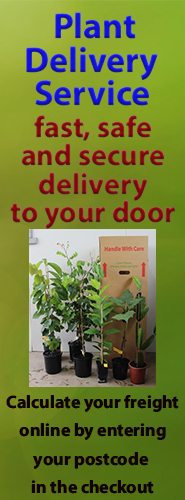 Mail order to your door