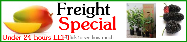 Click to find out how much freight is to your place.