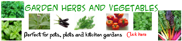 Herbs and Vegegatables