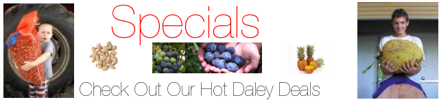 Hot Daleys Deals