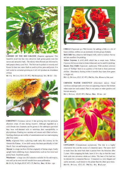 Fruit Tree Catalogue Center Pages Colour