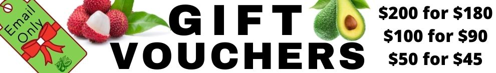Christmas Vouchers - with free voucher NEW