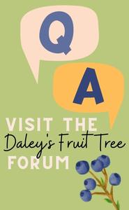 Ask Fruit Tree Questions on the forum