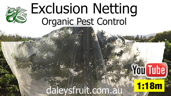 Exclusion Netting Fruit Trees