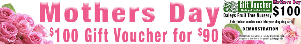 Mothers Day Gift Vouchers $100 Voucher for $90