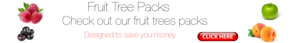 Fruit Tree Packs - Designed to Save you Money