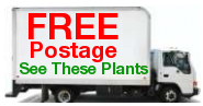 Postage Free Fruit Trees