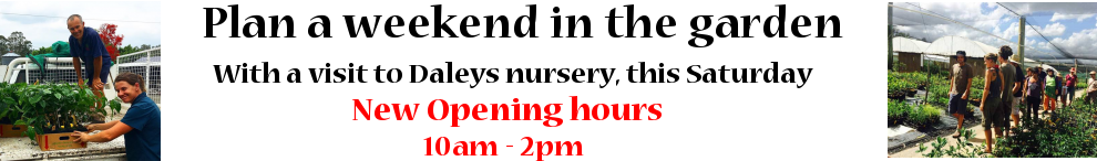 Saturday opening time