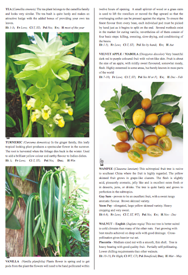 Fruit Tree Catalogue Inside Colour Pages