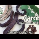 Growing Carob Trees youtube video showing them growing in Australia