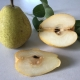 Nashi - Sunshu fruit