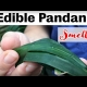 Edible Pandanus plants how they can be grown in subtropical climates to be used in cooking mains and deserts