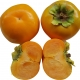 Izu Persimmon split in half showing the seed and flesh texture along with the whole fruit in the background