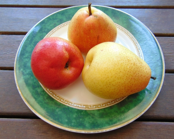 'Corella' pears, bought in Australia