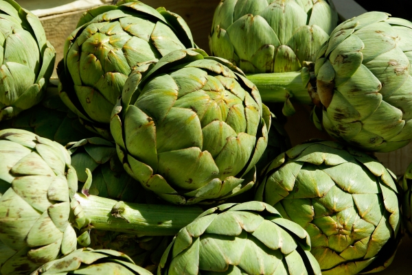 Artichokes ripe and ready being displayed at the markets