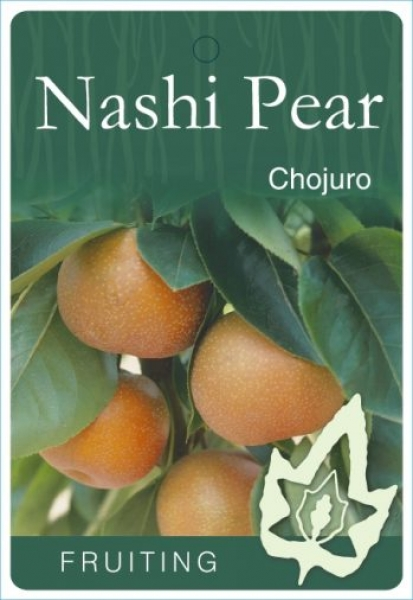 Nashi Pear Chojuro plant label