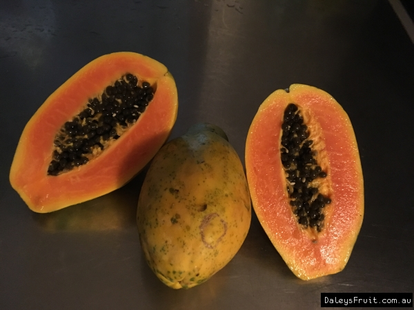 Ripe Solo Papaya at Botanic Arc Nth Qld