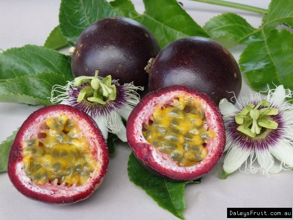 Passionfruit - Black