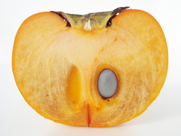 Fuyu Persimmon Fruit Cut in half showing 1 seed