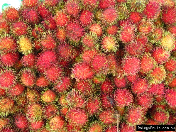 rambutan fruit tree, Natural flower