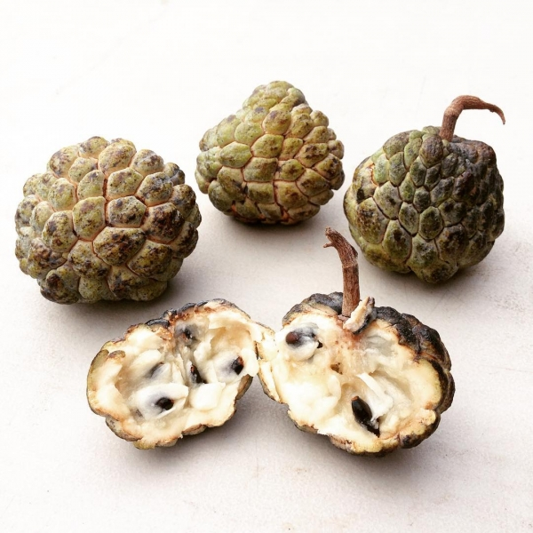 Sugar Apple compliments of Only Foods