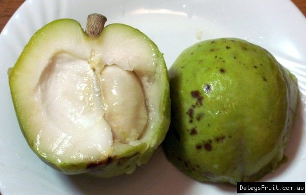 White Sapote cut open