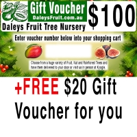 100 Dollar Gift Voucher to give away plus Free 20 dollar voucher for you By DaleysFruit.com.au [All Rights Reserved]