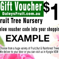 Example Mothers Day Gift Voucher A fruit tree voucher
