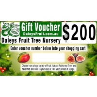 200 dollar Christmas Gift Voucher By DaleysFruit.com.au [All Rights Reserved]