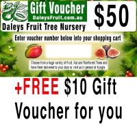 50 dollar gift voucher with free 10 dollar gift voucher for you By DaleysFruit.com.au [All Rights Reserved]