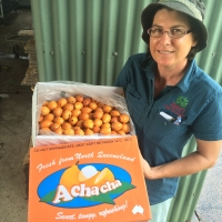 Kath Showing a box of Achacha Fruit