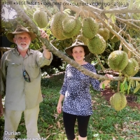 Rare Fruit Review Cover By Australian Rare Fruit Review [All Rights Reserved, Supplier of DaleysFruit.com.au]