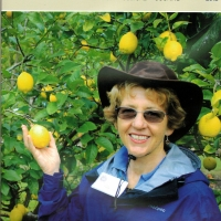 Front Cover Rare Fruit Review 2012 By Australian Rare Fruit Review [All Rights Reserved, Supplier of DaleysFruit.com.au]