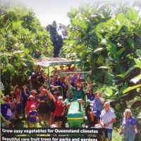Australian Rare fruit Magazine 2017 front cover By Australian Rare Fruit Review [All Rights Reserved, Supplier of DaleysFruit.com.au]