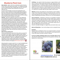 Blueberry Burst Plant Care Information Sheet By PlantNet [All Rights Reserved, Supplier of DaleysFruit.com.au]