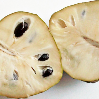 The Heart Shaped Fruit of the Cherimoya