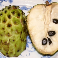Custard Apple Annona atemoya By user:takoradee [GFDL (http://www.gnu.org/copyleft/fdl.html), CC-BY-SA-3.0 (http://creativecommons.org/licenses/by-sa/3.0/) or CC BY 2.5 (https://creativecommons.org/licenses/by/2.5)], from Wikimedia Commons