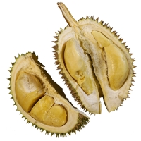 Cut Open Durian Fruit - Durio zibethinus By SpencerWing [CC0 1.0 (https://creativecommons.org/publicdomain/mark/1.0/)]