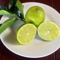 Tahitian Lime By DaleysFruit.com.au [All Rights Reserved]