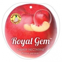 Nectarine Royal Gem Label
