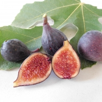 Fig Violette De Bordeaux By DaleysFruit.com.au [All Rights Reserved]