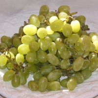 Grape Thompson Seedless By Glane23 [CC BY-SA 3.0  (https://creativecommons.org/licenses/by-sa/3.0) or GFDL (http://www.gnu.org/copyleft/fdl.html)], from Wikimedia Commons