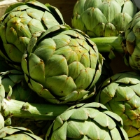 Artichokes ripe and ready being displayed at the markets By jackmac34 [License (https://pixabay.com/service/license/)]