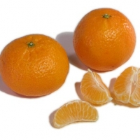 Mandarin - Nules (Clementine) By Coosemans LA Shipping http://www.weshipproduce.com/ [All Rights Reserved, Permission Granted] From Website