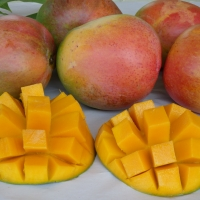 Mango R2E2 fruit By DaleysFruit.com.au [All Rights Reserved]