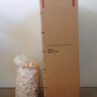 Mushroom - Shiitake Grow Kit For Sale (Size: Large)  (Grown from Seed)