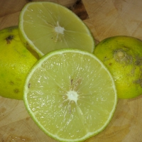 Orange Bergamot Split in half By Assianir [CC BY-SA 3.0 (https://creativecommons.org/licenses/by-sa/3.0)], from Wikimedia Commons