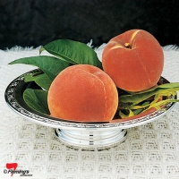 Flordagold peach fruit tree is a rounded large attractive coloured peach tree low chill of 325 hours.
