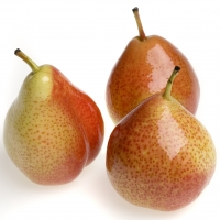 Corella Pear Fruit Display By Apple and Pear Australia Ltd [CC BY 2.0 (https://creativecommons.org/licenses/by/2.0/)] From Flickr https://flic.kr/p/jazeeM