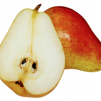 Corella Pear split in half showing juicy sweet flesh By DaleysFruit.com.au [All Rights Reserved]